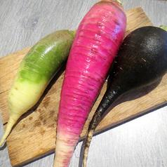 Salade de radis multicolors 3