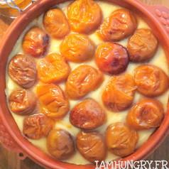 Financier geant aux abricots 3