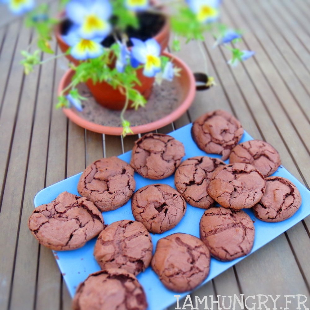 Biscuits croustimoelleux au chocolat