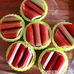 Tartelettes pommes rhuarbe 2