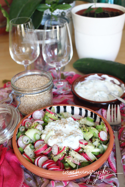 Salade de concombre, radis et ciboulette