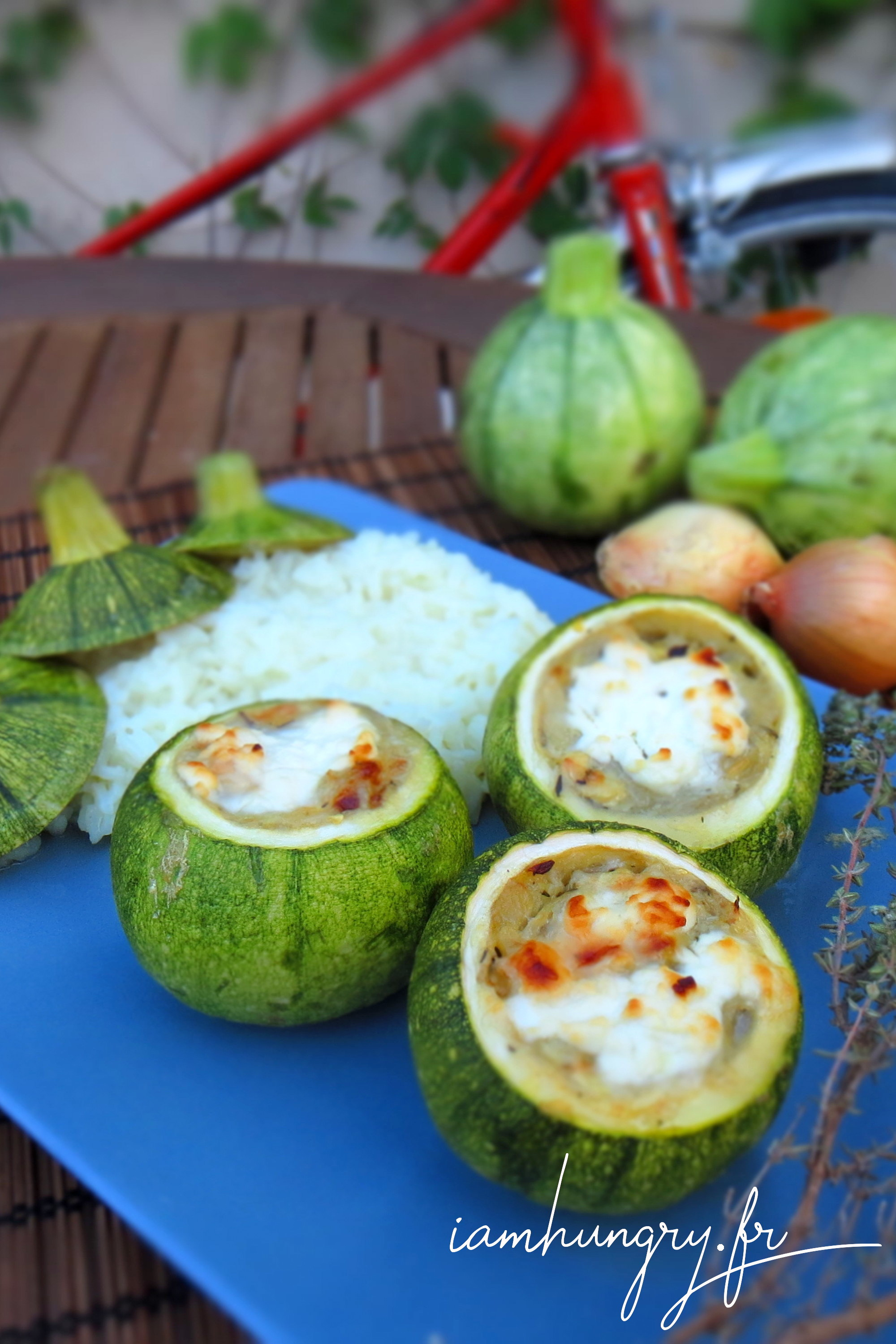 Round zucchini stuffed with onions and goat cheese