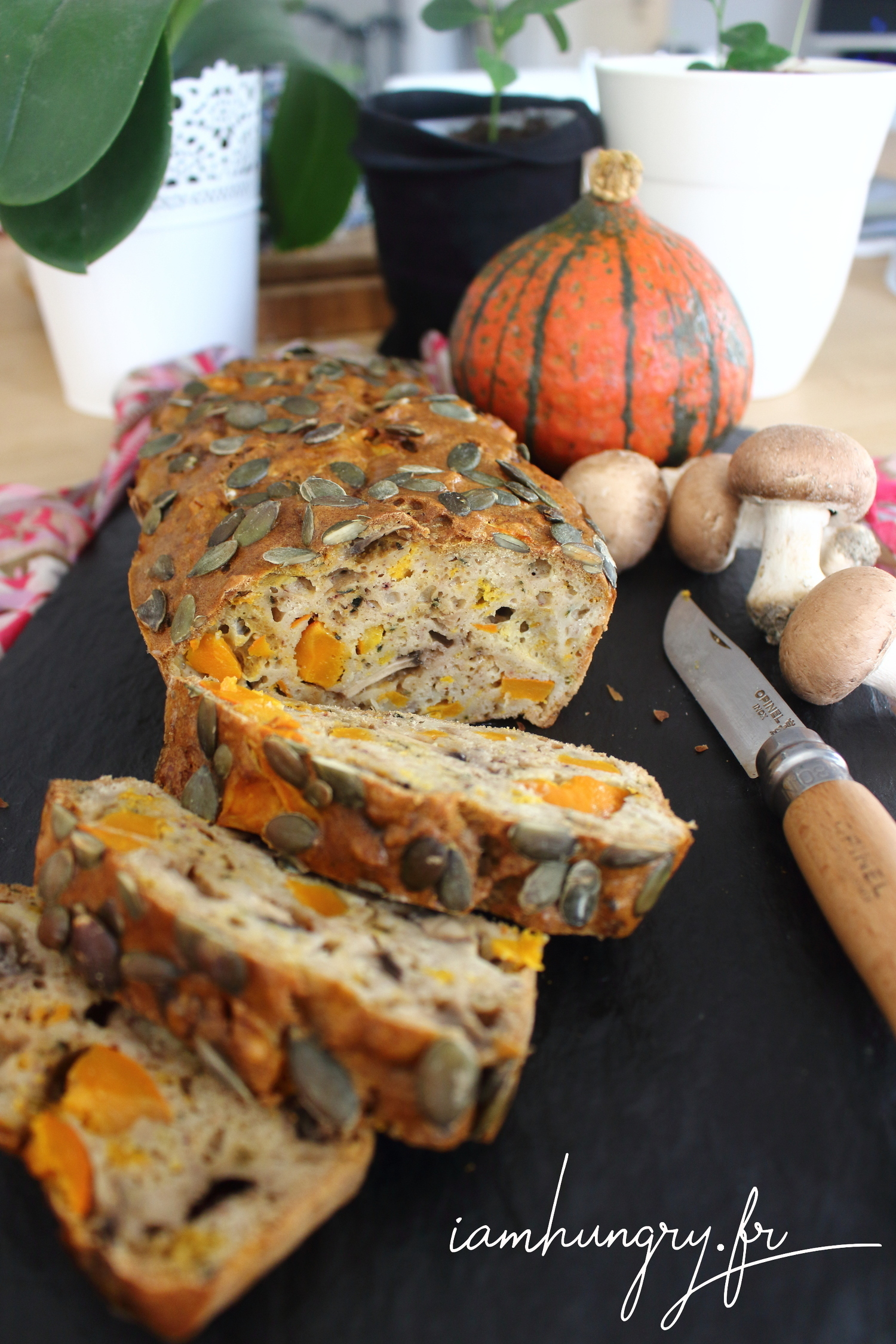 Cake potimarron et champignon