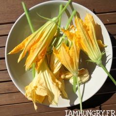 Beignets de fleurs de courgettes 6