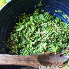 Salade pimprenelle mourron des oiseaux carre