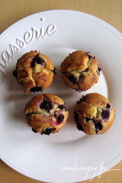 Muffins tout doux aux myrtilles