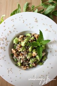 Salade quinoa feves noix 1a