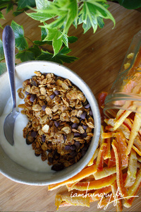 Muesli orange chocolat rect