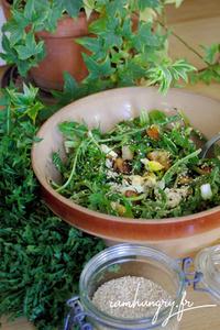 Salade de pissenlits 1 rect b