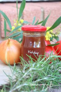 Ketchup tomates rect