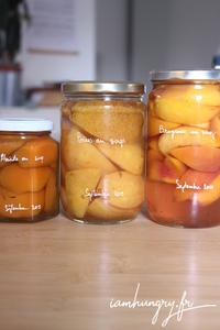 Fruits au sirop rect