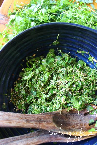 Salade sauvage de pimprenelle